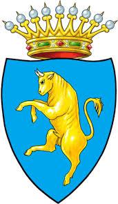 Regolamento NCC Torino