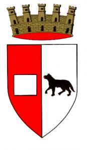 Licenza NCC Piacenza