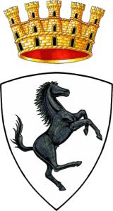 Licenza NCC Arezzo