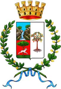 Licenza NCC Villacidro