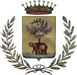 Licenza NCC Biella