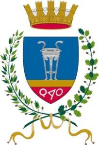 Licenza NCC Crotone